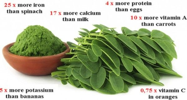 Viral Alternative News: Breaking Study: This Green Herb Could be The Cure to 5 Different Types of Cancer Including Ovarian, Liver, Lung and Melanoma