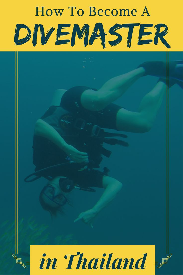 1734 best buceo images on pinterest diving diving suit and how to become a divemaster in thailand xflitez Choice Image
