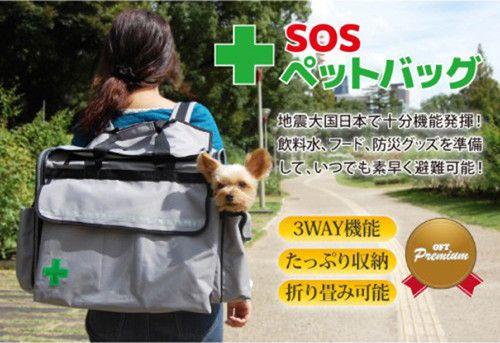 愛猫・愛犬のための防災グッズが便利!! | ライフ | マイナビニュース