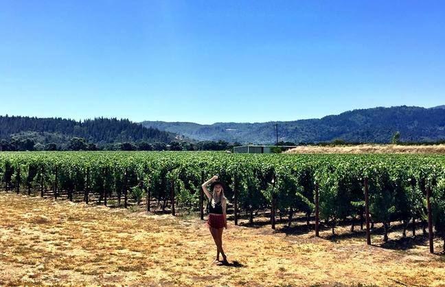 Bird of Balance Blog: Napa Valley