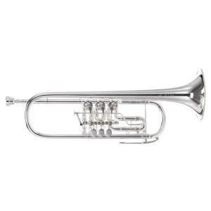 "Bb Trumpet Custom J. Scherzer 8218W-S ""Cologne"""