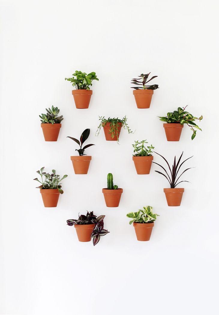 Diy Hanging Wall Plants Diy Planters Plant Wall Decor Wall