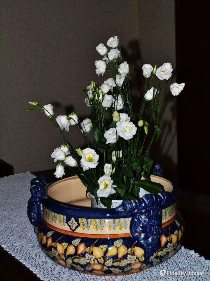 Se hai un angolo in ombra, un po' buio in casa, puoi sempre rallegrarlo con un vaso di rose bianche.