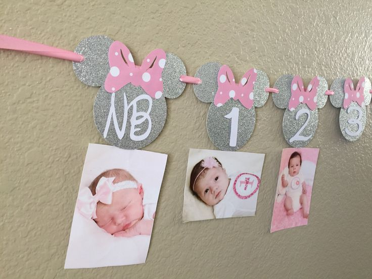 Minnie Mouse 12 month photo banner Photo banner  Pink and