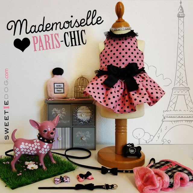 <3 Lookbook Mademoiselle Chic <3 Harnais chien Paris Style – Harnais Dashing Pinkaholic – Collier chien Baby Bow - Collier Silver Heart - Collier & Laisse chien Black Darling – Distributeur sachets Luxury United Pets – Noeud Paris – Noeud coiffure chien Rose Pois Noir- Jouet chien Koko Chanel Parfum - www.sweetiedog.com