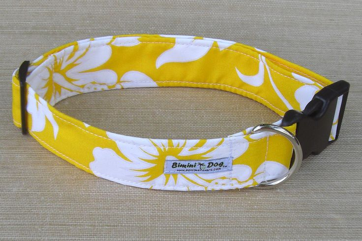 Tropical Dog Collars - Bahama Island collars - Hawaiian bandanas - Pet accessories - Potcake collars Stocking stuffer for dogs