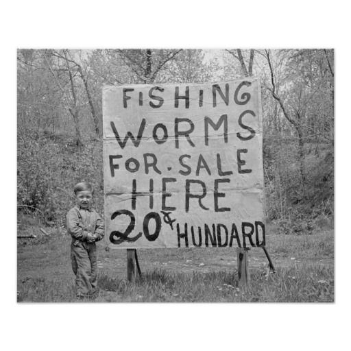 7 best hunting fishing images on pinterest hunting for Fishing worms for sale