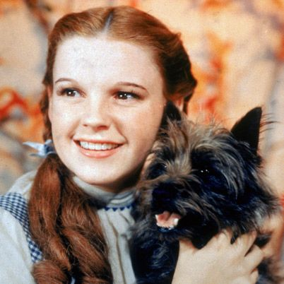 Judy Garland in my all-time favorite movie, Wizard of Oz