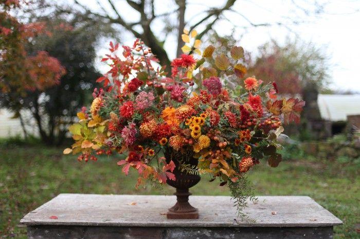Fall mum bouquet from Floret Flower Farm
