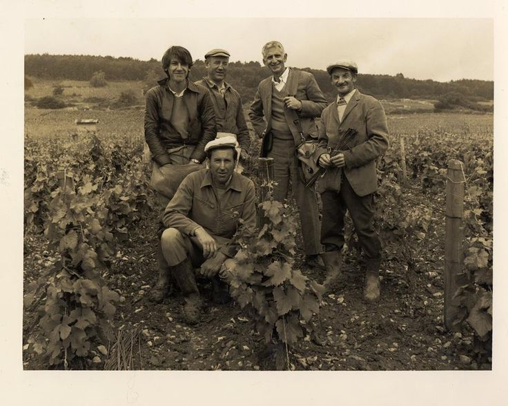 Bern Laxer in France collecting the wine that has made our cellar legendary!