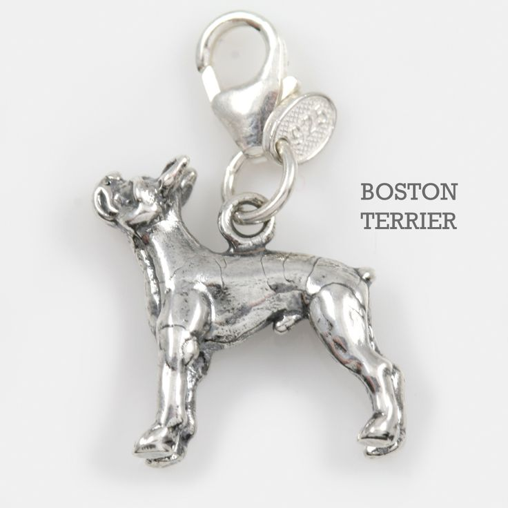 Pandora Jewelry Boston: 46 Best Dog Breed Charms Images On Pinterest