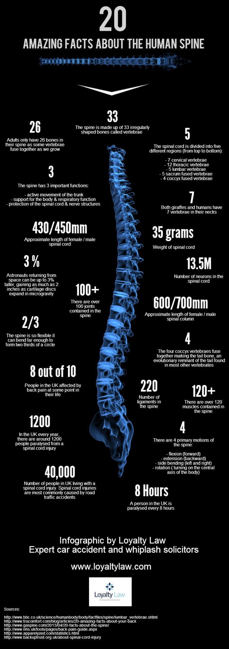 20 Amazing Facts about the Spine Infographic-learn to look after your spine and therefore the rest of you, body and mind with the Alexander Technique