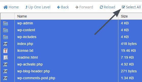 Select all di folder wordpress