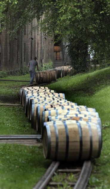 This at the Woodford Reserve distillery still American owned, still doing it the old way. A simply amazing tour if your in the area - to walk in the aging barns and inhale deeply the aroma of bourbon, oak barrels and old wood is awesome (they call it Angel's Breath).  (Dan)