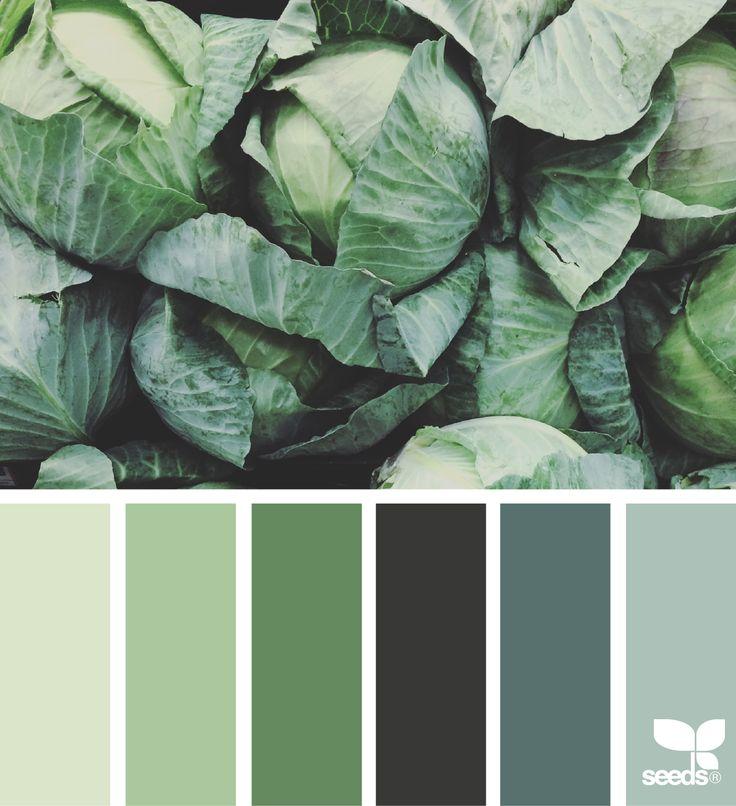 Harmonie vert choux  I Design I Couleur I Inspiration I Camaïeu I Peinture I