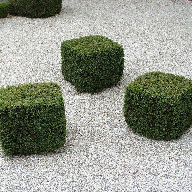 Hardys Fliesen 18 best betonoptik fliesen images on architecture
