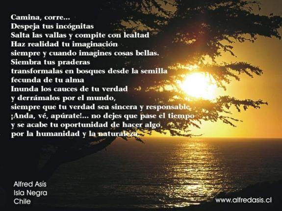 Proyecto 1000 poemas de Alfred Asis, Isla Negra, Chile - Participación gratuita - Blog - Bonde. O seu portal
