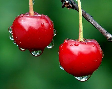 Health Benefits Of Cherries - www.be-fit.me