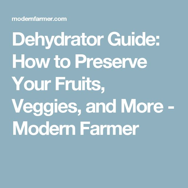 Dehydrator Guide: How to Preserve Your Fruits, Veggies, and More - Modern Farmer