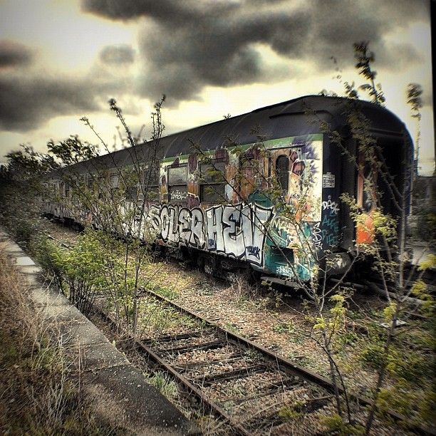 Abandoned train in Paris ~ Imagine turning this into a tiny house set of row houses. Putting life back into these dilapidated train cars.
