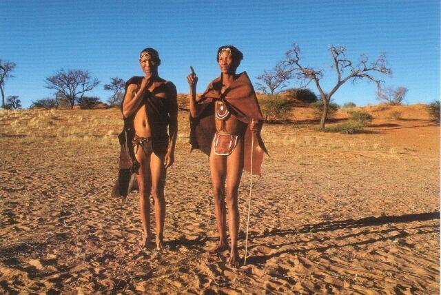 The San Bushmen of the Kalahari Desert and Hoodia Gordonii