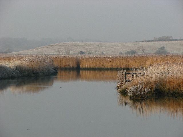 river blyth   Flickr - Photo Sharing!