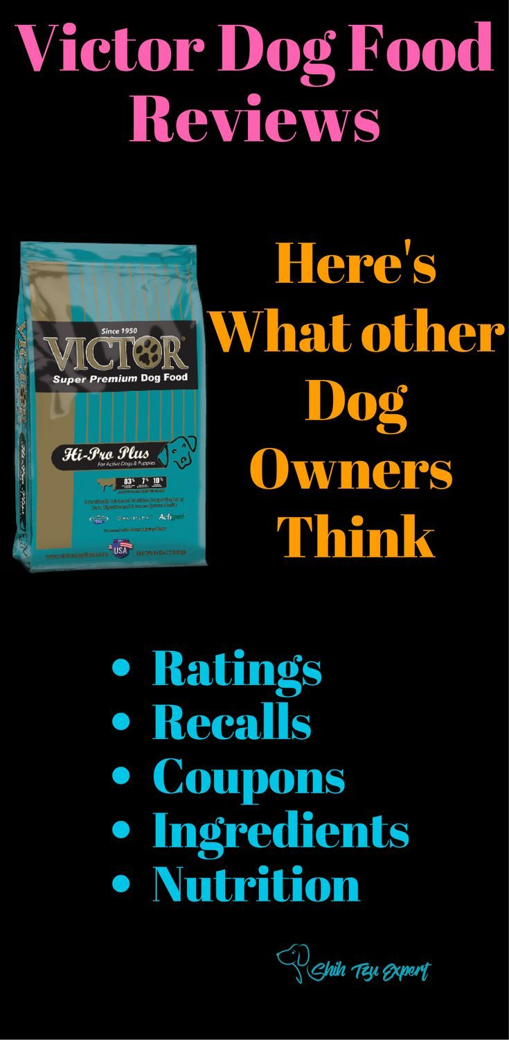 Victor Dog Food Reviews By Experts Ratings Recalls History