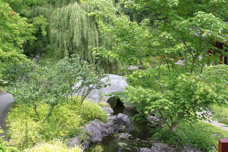 Chinese tuin