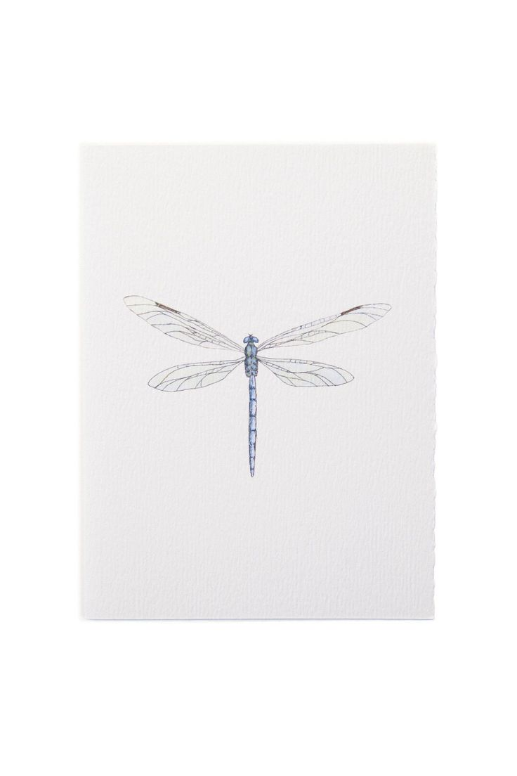 The intricate watercolor dragonfly illustration springs to life on this greeting card from Redbird Studio. Dainty dragonflies accent any message you add to the unlined interior. - From Redbird Studio