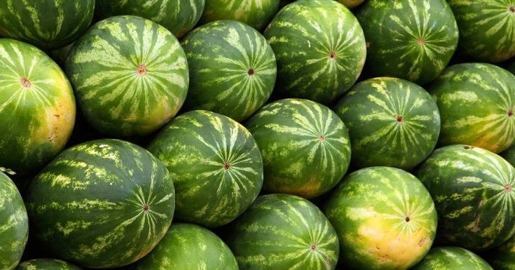 You Should STOP Eating This Type of Watermelon! Watermelon is excellent refreshing fruit! But are all types safe for consumption?n eastern China watermelons have been bursting open, covering the fields after farmers...find more here:  http://worldhealthchoice.com/stop-eating-type-watermelon/