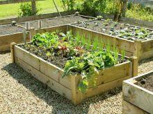 Quickcrop planed timber raised veg planter