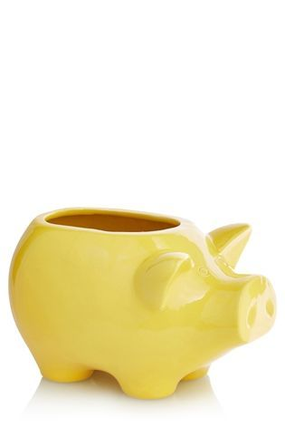 Buy Happy Pig Plant Pot from the Next UK online shop
