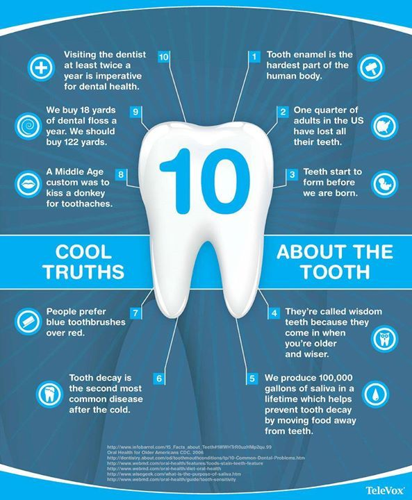 Need some fun #dental trivia? Here are some cool #toothtruths to stump your…