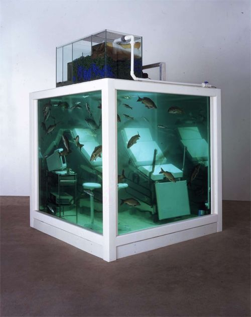 """Damien Hirst Love Lost 2000 Vitrine tank and filtration unit, couch, trolley, chair, surgical instruments, computer and fish  213.4 x 213.4 x 213.4 cm     84 x 84 x 84"""""""