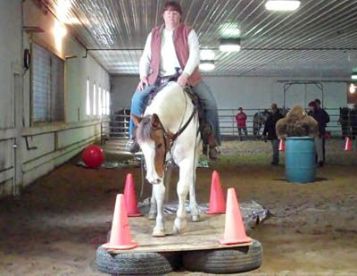 Rum River Equestrian Farm in Princeton held the Minnesota Walking Horse Association's Second Annual Trail Clinic. Gaited and non-gaited clinic participants learned how to ride their horses wi…