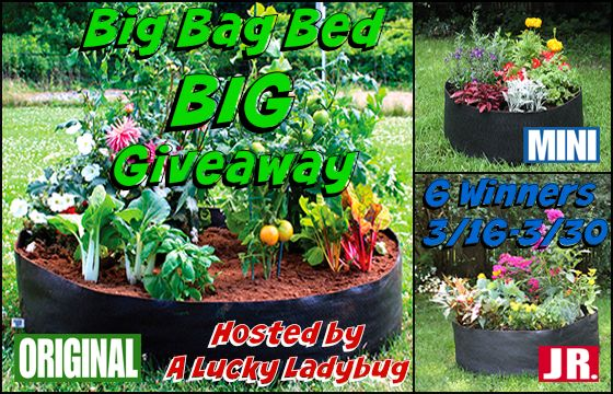 Big Bag Bed BIG #Giveaway Event @MOON_Blogs - Gardening, Raised bed ideas, organic, removable solutions, Green Living, Small Backyard spaces
