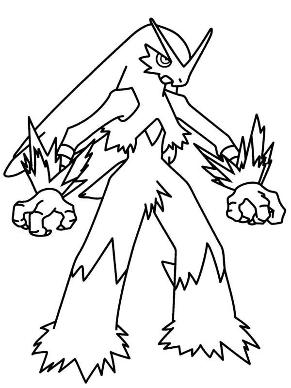 pokemon torchic evolution coloring pages - photo#25