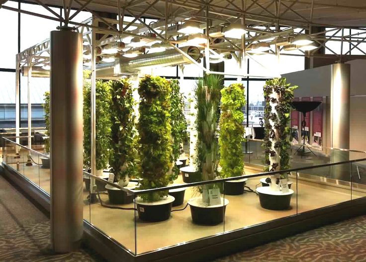39 Best Grow Your Own Organic Aeroponic Home Tower Garden