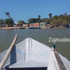Camarones, Guajira, Colombia. El poblado a que cada año llegan los flamencos rosados. Travel by ligeradeequipaje.com