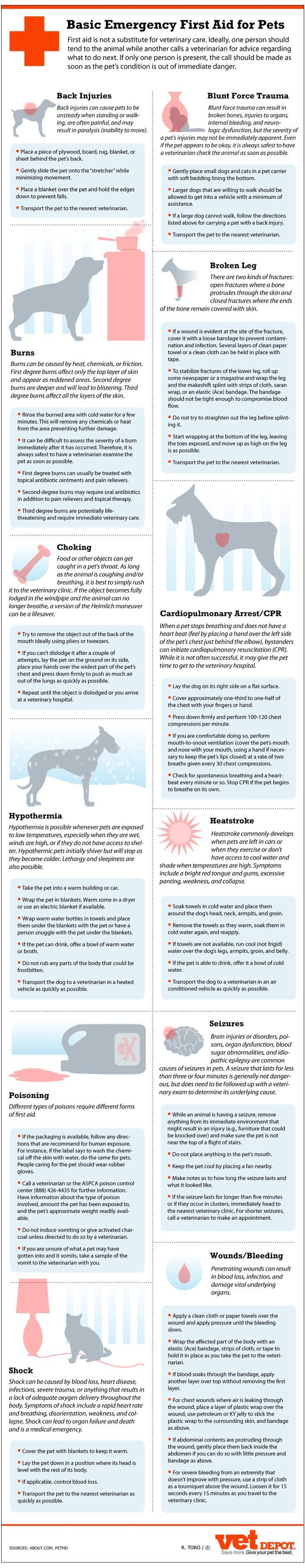 Basic Emergency First-Aid for Pets #Infographic #PetTips
