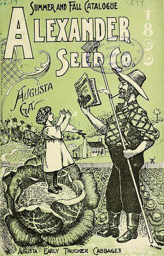 Alexander Seed Co. 1899