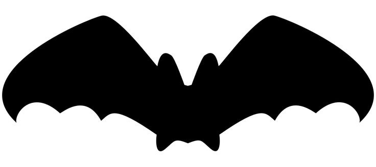 """Ghost bat - """"Kingdom of Bats"""" and """"Dwelling in Darkness"""""""