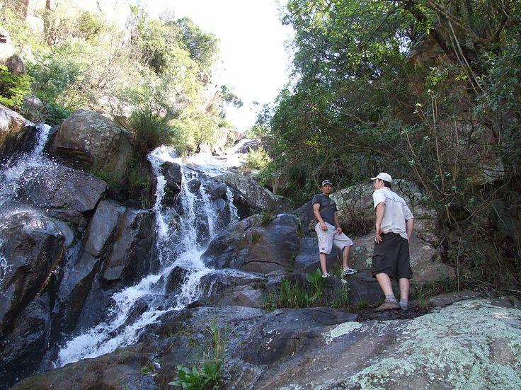 Dawsons Game & Trout Lodge, Mpumalanga, South Africa
