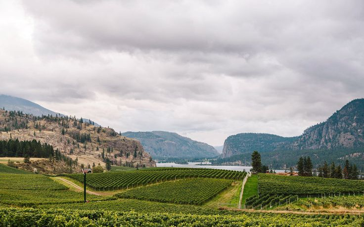 Best Places to Travel in 2016: Okanagan Valley, British Columbia. With rolling hills dotted with sagebrush and ponderosa pine—and thousands of acres of vineyards—the Okanagan Valley can no longer be considered a nascent Napa.