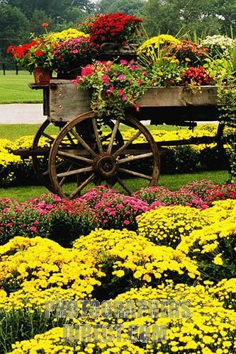 using decorating old farm wagons | Old wagon and mums at roadside farm stand , Columbus , Indiana , USA ...