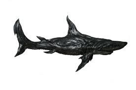 Rubberen #haai kunst van autobanden.