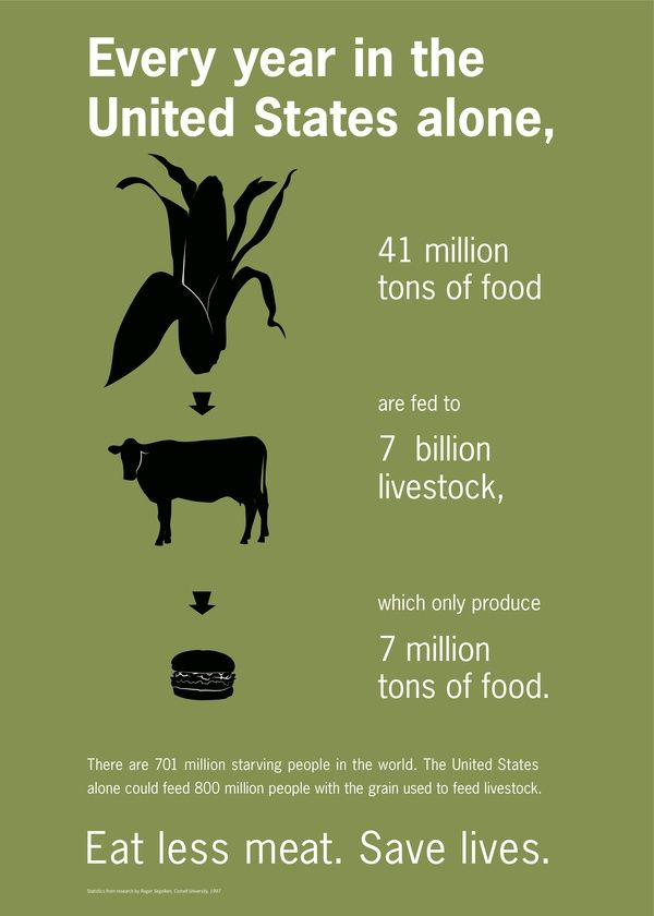 It's really not that hard to do. Even if you just go one or two days every week without meat, you'd be saving a lot of lives, and saving the planet to grow foods other than corn