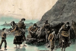 """""""The Graves Are Walking"""": Was the Great Potato Famine a genocide?"""