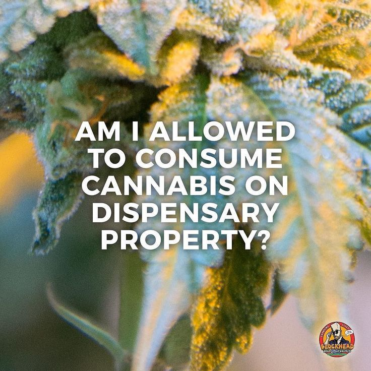 FAQ: Am I Allowed to Consume Cannabis on Dispensary Property?  _  Answer: Unfortunately no. Due to California laws Medical Marijuana may not be inhaled smoked eaten ingested vaped or otherwise used or consumed at any premise and/or location within 300 feet of the premise and/or location on the public right of way or in those areas restricted under the provisions of California Health & Safety (code section 11362.79). _  Tag a friend to pass on this vital information.  #SharingIsCaring…