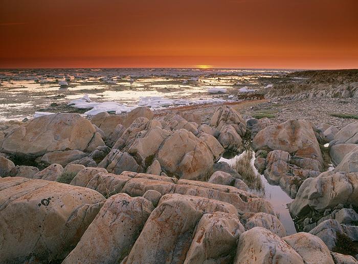 Bird Cove - Hudson's Bay, Churchill, Manitoba, Canada